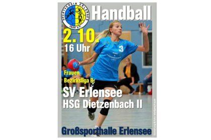 sv-erlensee-02-10-2016-hsg-dietzenbach-ii